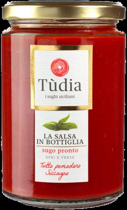 salsa-tudia